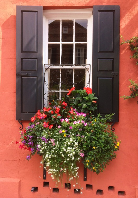 charleston window box) (2)